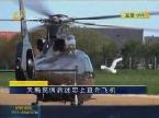 搞笑:天鹅丧偶后迷恋上直升飞机