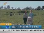 济南:童话片《会飞的小精灵》温情来袭