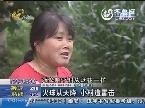 莱芜:火球从天降 小村遭雷击