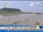 聊城:一夜狂风暴雨 蔬菜基地损失700万