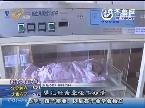 烟台:厕所里传出婴儿啼哭声 早产婴儿掉进茅坑