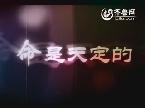 《战地狮吼》:兄弟同门不同路 10月8日登录齐鲁频道