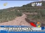 莱阳:承包田边突现大沟 庄稼被困