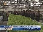 山东省农科院:与第一书记 种粮大户交流先进农业技术