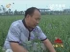 党员风采·为民务实清廉:孙庆元:为了百姓都幸福(四)打铁还需自身硬
