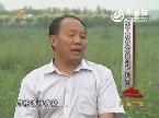 党员风采·为民务实清廉:孙庆元为了百姓都幸福(六)让幸福在安村流淌