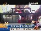 济南:泰迪买回家上吐下泄 帮办揭开宠物狗市场的内幕