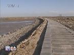 大沽河红岛经济区流域治理综合施策