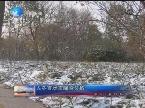 入冬首场雪降临泉城
