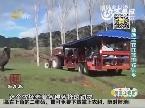 乡村季风海外版:新西兰农庄旅游欢乐多