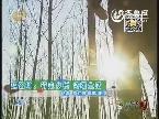 赵铭坤:行走乡村 诗颂生活