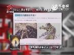 2013年12月24日《搜索快读》