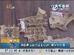 陕西:周原遗址首次出土长达30厘米的卜甲