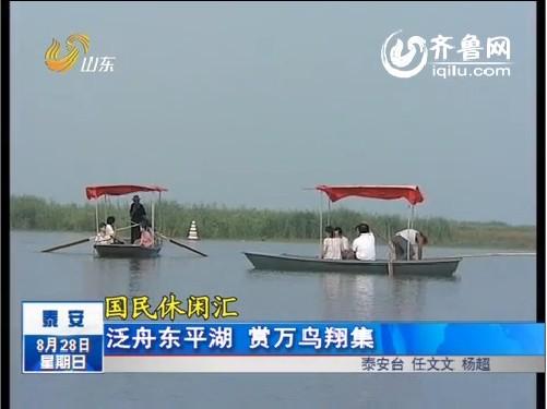 国民休闲汇:泰安泛舟东平湖 赏万鸟翔集