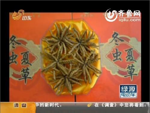 """冬虫夏草的天价神话:""""软黄金""""背后暗藏炒作利益链"""