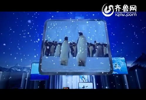 青岛极地海洋世界宣传片