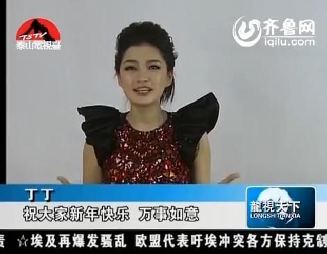 2013全球华人网络春晚明星大拜年