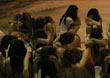 跟拍深圳警方扫黄全过程 卖淫女坐满篮球场