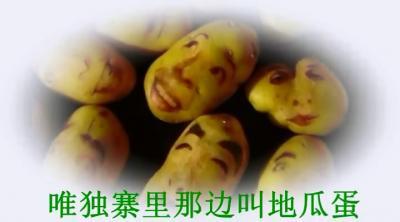 莱芜版《小地蛋》秒杀筷子兄弟《小苹果》