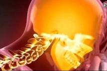 6种好食物饿死癌细胞 大豆番茄等占三成影响力