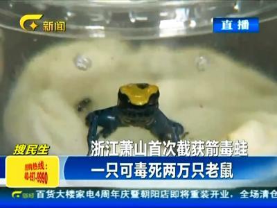 浙江首次截获南美箭毒蛙 可毒死两万只老鼠