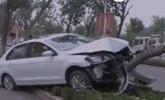 德州:夫妻车内起争执抢方向盘 轿车撞上景观树