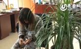 齐河:安徽女子画符消灾骗钱 让人识破被抓