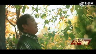 """颜景江:一个修山造林的""""疯子"""""""
