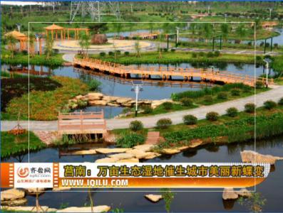 莒南:万亩生态湿地催生城市美丽新蝶变