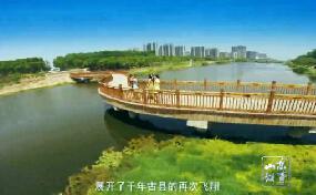 山东故事:千年古县金乡县的蜕变