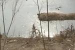 禹城:粪坑堆在路中央 村民路过很发愁