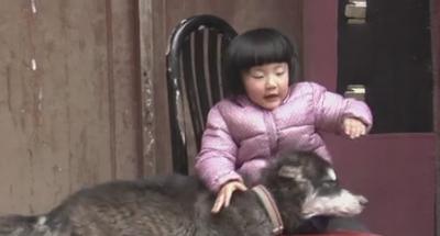 """20150201《天下父母》预告:3岁截肢女孩想要重新""""站起来"""""""