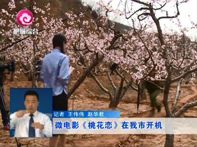《桃花恋》在肥城拍摄