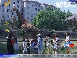 济南:孩子快乐六一 与动物们亲密接触