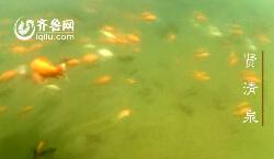 水下看名泉(三):五龙潭公园