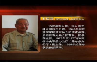 王岳西:我抓住了日军飞行员