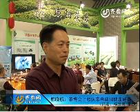 2015中国茶博会上品鉴咸阳健康好茶