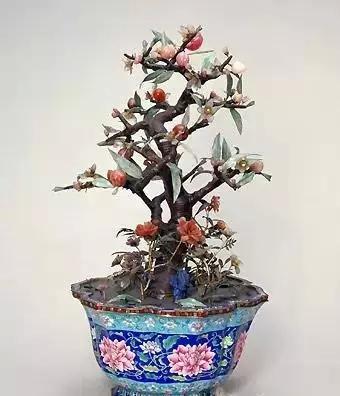 碧玺桃树盆景