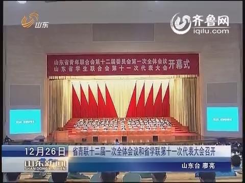 山东省青联十二届一次全体会议和省学联第十一次代表大会召开