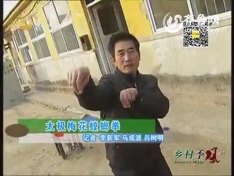 太极梅花螳螂拳