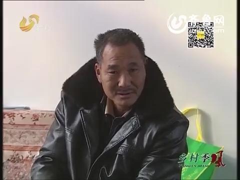 山东特产潍县萝卜:五彩萝卜网上卖