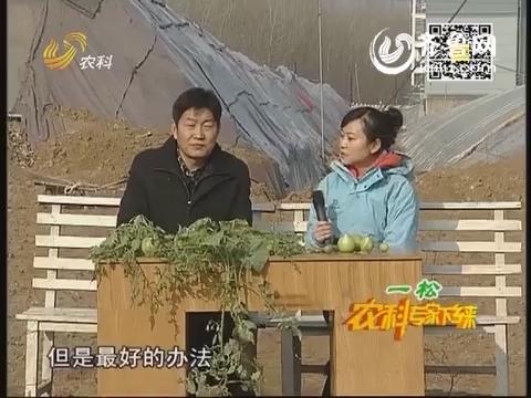 2014年01月11日《农科专家下乡来》