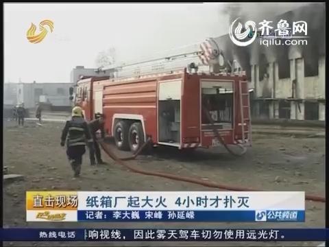 枣庄:纸箱厂起大火 4小时才扑灭