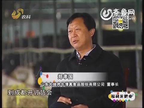 金领农民 郑孝国:中国梦 牛精神