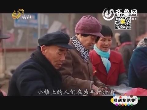 乡村季风特别节目·山东古镇之琉璃寺镇