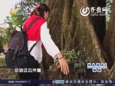 2014年02月10日《逍遥游》:春节专辑 荔枝之旅