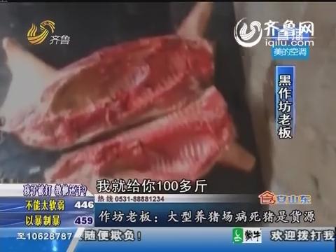 莒南:村里有个黑作坊 专收小死猪