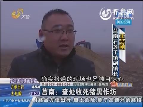 莒南:查处收死猪黑作坊