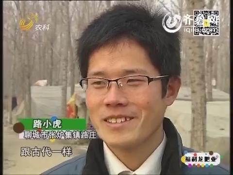 乡村故事:大学生地下养猪
