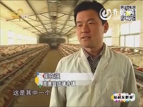 金领农民:困境逼出创业路
